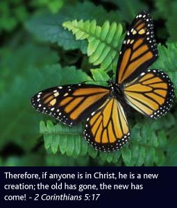 Scripture-Fader-1